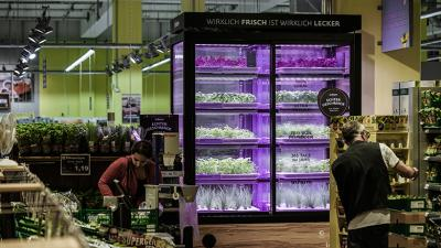 The living produce farms will initially launch in Bellevue and Kirkland
